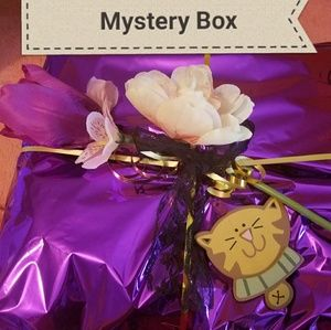 Other - Mystery Box! Reserved